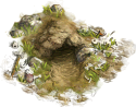 NT: Wildlife Cave (easy)