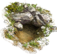 NT: Wildlife Cave (medium)